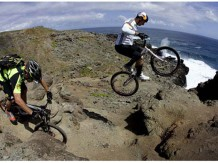 Downhill & Freeride