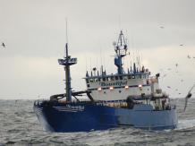 Poławiacze krabów