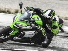 Kawasaki Ninja 300 30th Anniversary Edition